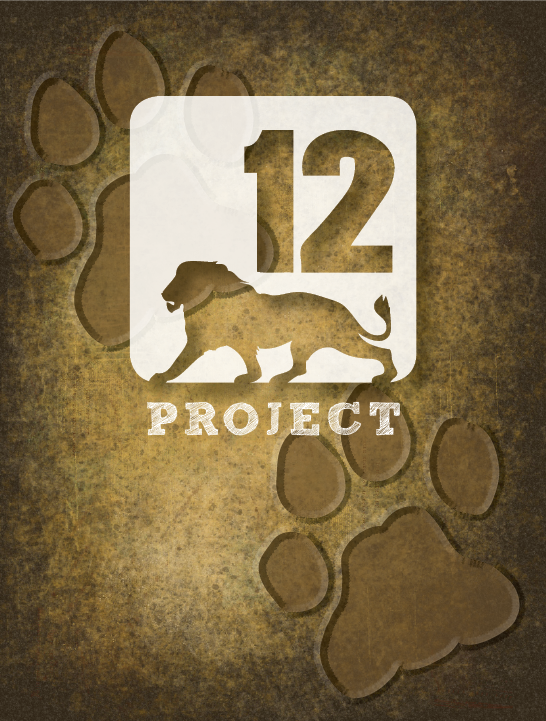 Logo Design – 12 Lions Illustration Project